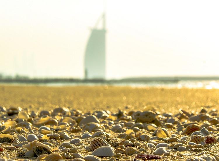 The burj Al Arab view